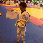 fete du judo 27 juin 2014