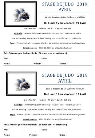 AM RONCHIN STAGE DE JUDO avril 2019